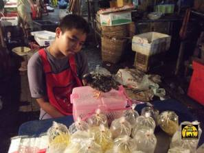 Boy and his pet chick at Khlong Toey Market